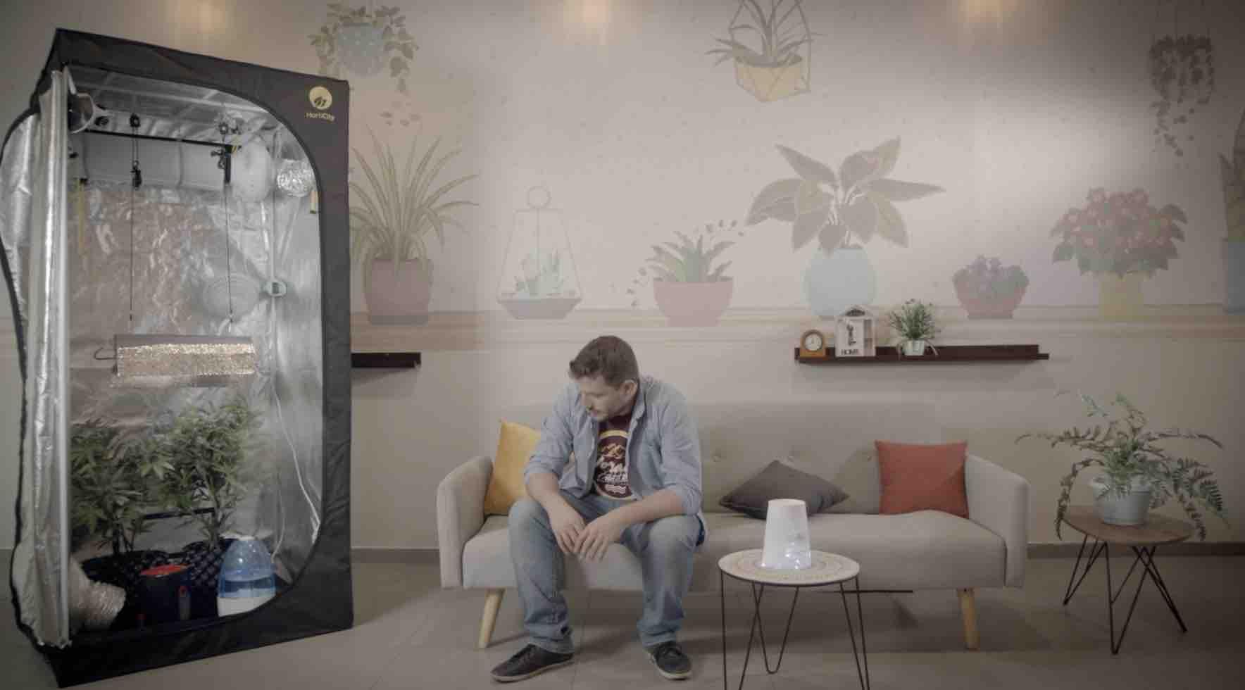 חברת גרו דירקטור מבקשות להנגיש לקהל המשתמשים בקנאביס רפואי