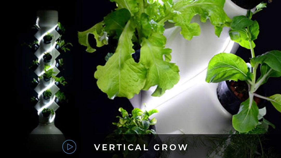 Vertical grow video